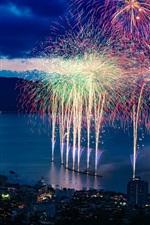City night, beautiful fireworks, bay, houses, lights