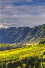 Preview iPhone wallpaper Germany, Ediger-Eller, mountains, river, fields, grape plantations, clouds