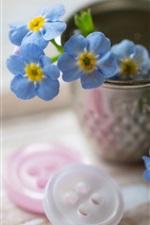 flores azuis pequenas, botões, copo