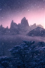 Preview iPhone wallpaper Mount Fitz Roy, Argentina, Andes, winter, snow, trees, mountains, dusk