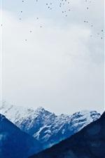 iPhone обои Горы, снег, облака, птицы летают