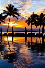 Preview iPhone wallpaper Palm trees, pool, water, sea, resort, sunset, evening