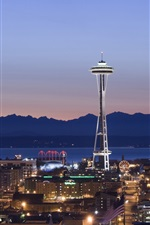 Preview iPhone wallpaper Seattle, night, houses, lights, tower, Space Needle