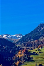 Preview iPhone wallpaper Switzerland, Alps, mountains, houses, trees, grass, blue sky