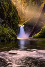 Waterfall in forest, creek, green, moss, trees, sun rays