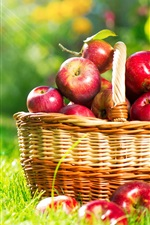 Preview iPhone wallpaper A basket apples, sun rays, grass