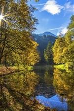 Preview iPhone wallpaper Autumn landscape, trees, river, sunshine