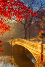 Preview iPhone wallpaper Autumn park at morning, river, bridge, trees, flowers