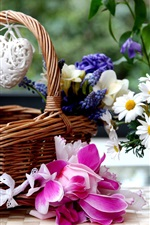 Preview iPhone wallpaper Basket, colorful flowers, freesia, hyacinths, chamomile, cyclamen