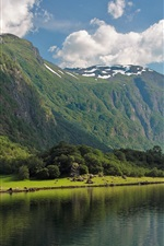 Bay Fjord, Norway, forest, river, mountains, clouds