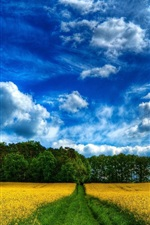 Preview iPhone wallpaper Beautiful farm field, nature, trees, clouds