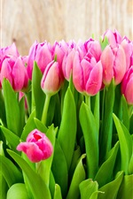 Preview iPhone wallpaper Beautiful pink tulip flowers bouquet