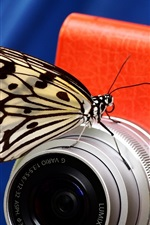 Preview iPhone wallpaper Butterfly and digital camera