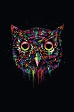 Preview iPhone wallpaper Colorful owl, creative design, black background