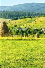 Farm field, hay, trees, mountains, houses, Ukraine, Carpathians