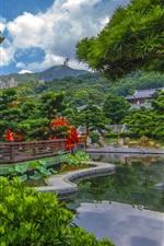 Гонконг, Китай, пагода, пруд, деревья, парк