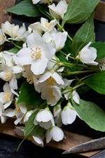 Jasmine flowers, scissor, wood board