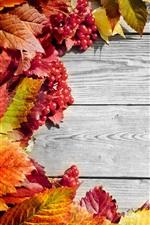 folhas vermelhas, bagas, placa de madeira, outono