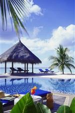 Resort, sea, palm trees, pool