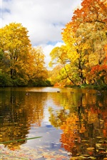 Preview iPhone wallpaper Russia, Saint Petersburg, park, pond, trees, autumn