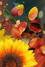 Preview iPhone wallpaper Sunflowers and red leaves