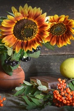 Sunflowers, berries, green apples
