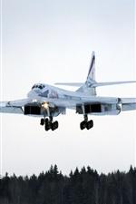 Preview iPhone wallpaper Tu-160 long-range bombers