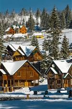 Ukraine, snow, winter, village, trees, houses