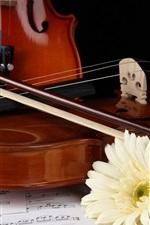 Preview iPhone wallpaper White gerbera, violin