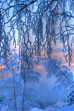 Preview iPhone wallpaper Winter dawn, thick snow, trees, twigs, river