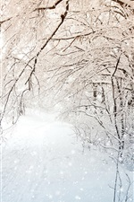 Preview iPhone wallpaper Winter nature, trees, white snow