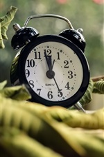 Alarm clock, leaves