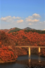 Autumn, bridge, river, trees, mountains, autumn