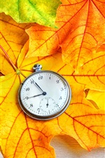 Preview iPhone wallpaper Autumn maple leaves and pocket watch