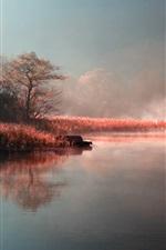 Autumn, morning, lake, fog, grass, trees, boat