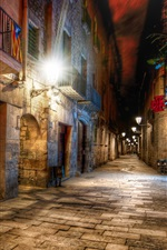 Barcelona, Spain, alley, night, lights