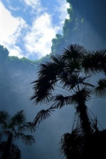 iPhone обои Большая природа дыра, деревья, облака, небо