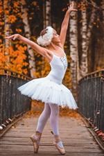 Criança menina, bailarina, ponte de madeira, árvores, outono