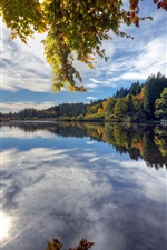 Preview iPhone wallpaper Deininger Weiher, Germany, lake, water reflection, trees, autumn
