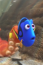 Preview iPhone wallpaper Finding Dory cartoon movie