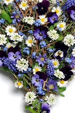 Preview iPhone wallpaper Flowers love heart, pansy, chamomile, grape hyacinth