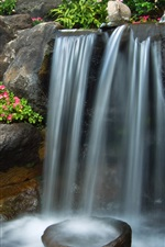 Garden, little waterfall, stones, petunia flowers, Palma