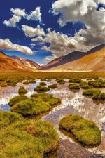 Preview iPhone wallpaper Ladakh, Jammu and Kashmir, mountains, swamp, grass, India
