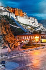 Preview iPhone wallpaper Lhasa Potala Palace, China tourist attractions
