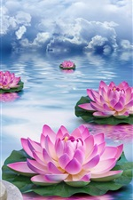 Lotus, stones, water, pink flowers, clouds, creative design