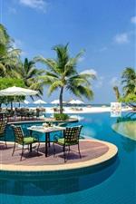 Maldivas, piscina, espreguiçadeiras, palmeiras, resort