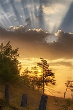 Preview iPhone wallpaper Morning, fog, sunrise, clouds, slope, trees