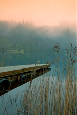 Preview iPhone wallpaper Morning nature, river shore, reeds, trees, house, fog