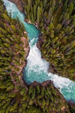 Preview iPhone wallpaper Nature landscape, forest, river, top view
