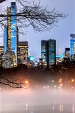 Preview iPhone wallpaper New York, Manhattan, USA, Central Park, lake, trees, skyscrapers, fog, dusk